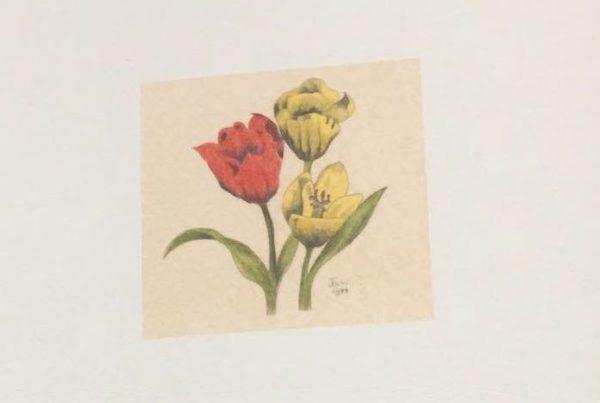 Rouwkaart met tulpen