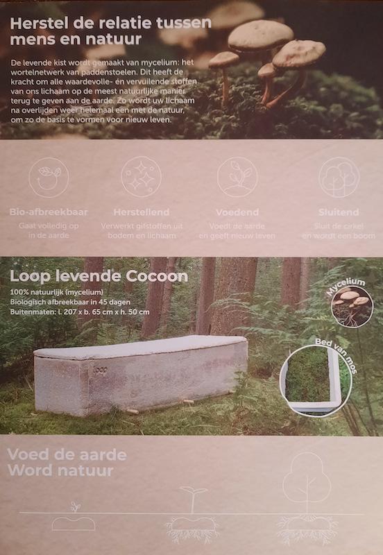 Flyer Loop living cocoon